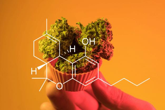 El consumo de marihuana como tratamiento para el glaucoma